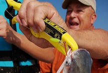 Saltwater Fishing ><((((º> / by Liz Marcrum Bozka