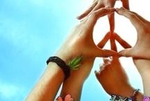 * PEACE * / by Nannette Serrano