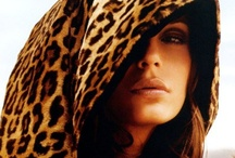 Wild Thing... / I love animal print -- in the house & on me! / by Dawn Rimmer