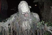 Haunted House Ideas / Scary and cool ideas that will transform any place into a spooky haunted house.