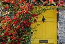 Red, Yellow, Green Love / by Liz Marcrum Bozka