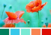 BEAUTY...Color Palette