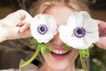> > floral fun < < / by Natural Life