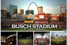 St. Louis Cardinals / by Jamie Walsh