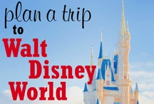Disney Tips & Ideas / Hoping to NEVER go to Disney but if we do I will be prepared! / by Laura Szymanski