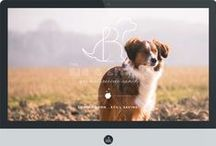 The Big & Little / animal rescue ranch / by Akula Kreative