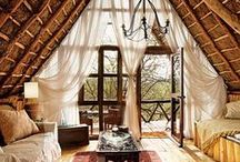 Tree Houses / Climb the tallest treehouse hotels around the world on your family vacation. Get the latest in family travel destinations, ideas and tips at MyFamilyTravels.com.  / by MyFamilyTravels.com
