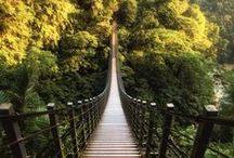 Steps to Climb / Steps worth the climb.  / by MyFamilyTravels.com