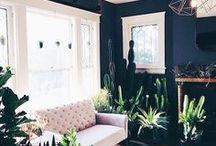 Room   Living
