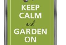 Outdoors - Yards, Gardens, etc.