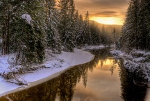Alaska / by Nancy Colcord