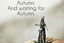 fall thoughts