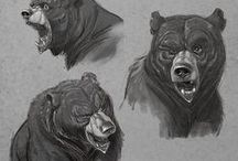 Draw bear / Enjoy a collection of bear anatomy. The collection contains illustrations, sketches, model sheets and tutorials.