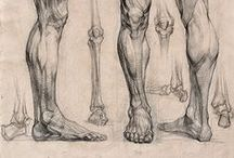 Draw legs/feets / Enjoy a collection of legs/feets anatomy. The collection contains illustrations, sketches, model sheets and tutorials.