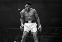 boxing / by Mapet Diaz