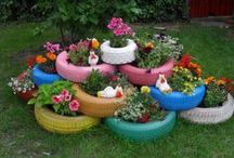 The Great Outdoors - Gardening & Yard / by Andi Quinn