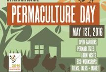 Permaculture gatherings