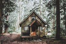 O Cabin! My Cabin! / by Sarah Shepherd