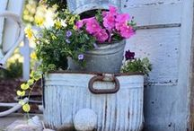 Garden / My favorite Garden Projects and tips.  / by Karen - The Graphics Fairy