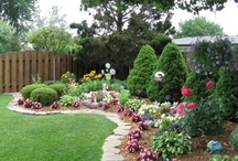 Outdoor (Landscaping & Gardening)   / All about Landscaping, gardening, tips, patios, pools, decks etc...