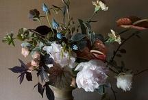 Flora  / by Sue Huey