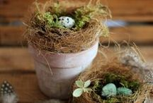 Spring Crafts and DIYs / The Best Spring themed Craft and DIY projects, tutorials, ideas and Printables.