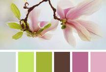 colourpallets
