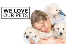 We Love Our Pets! / We love your cats, dogs, and other furry friends *almost* as much as you do. Here are some ideas and tips for keeping them safe.