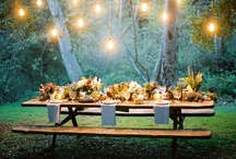 Dinner Party Ideas / by Emily Di Giacomo