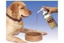 Pet Health and Wellness / You may have a puppy that may need a supplement to help with anxiety or a senior pet that is starting to show signs of aging.  We have it all from supplements to help with joint health, anxiety, digestion, itching and more to make sure that your pets live a happy and healthy life!