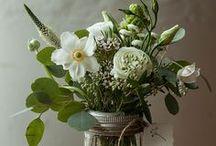 Flowers and gardens / by Karoline Begin