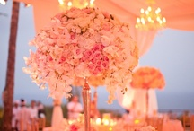 Wedding ღ centerpieces / Breathtaking centerpieces!  / by Sierra ღ Smith