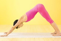 Exercise & Health / Exercise, weight loss, stress, yoga