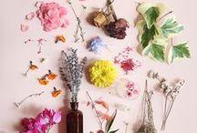 Anna Ekre Guest Pinner Gallery / Photowalls talented Swedish designer Anna Ekre shares a bit of what inspires her.