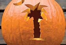 Halloween / by Susan Brunson
