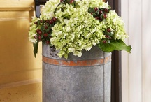 Flower Containers / by Susan Brunson