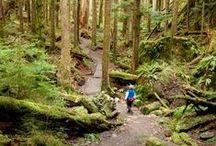 hiking and camping / by MJ Kooshball