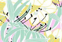   Patterns / Prints & Patterns