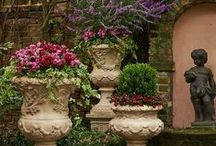 Container Gardening / by Mimi Kent