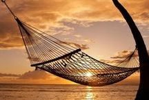 Hammocks and Other Cozy Comforts ... / by Mimi Kent
