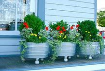 OUTDOORS LIVING &, GARDENING I / by Marion Bergeron