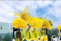 Weddings { Yellow } / by UrbanMuse.ca