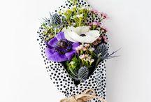 Flower / by Maria Fernanda Solano Trejos