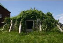 underground root cellars, greenhouse. dwelling and chicken coops / designing and building underground accommadations / by Janis Sorenson