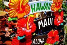 Destination Maui, Hawaii / Alaskan Grammas... vacationing in Maui 2014 / by Janis Sorenson