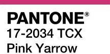 Trendfarben 2017 Pantone 17-2034 Pink Yarrow