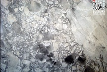 Take It For Granite! / by Angelique Duseigne