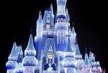 Disney!  / by Dusty King