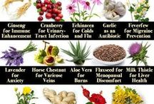 Natural Remedies / Natural solutions to health problems and illnesses.