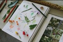 Nature Journal / Make a nature journal.  Keep one.  Simple, easy, creative ways to start journalling.  Creative Nature journals. Learning, Drawing, Writing, Collecting Specimens for nature lovers.